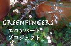 greenfingersエコアパートプロジェクト